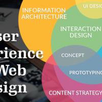 User Experience in Website Design
