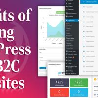 Benefits of Using WordPress for B2C Websites
